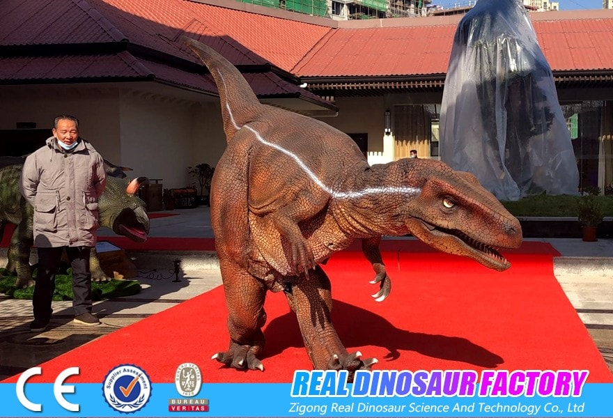 Customize Realistic Dinosaur Costume For You